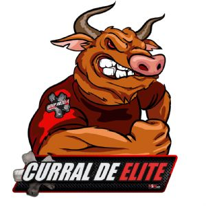 RANKING - CURRAL DE ELITE - 2016