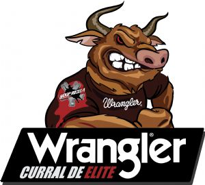 RANKING >> 2018 - TOUROS - (CURRAL DE ELITE)