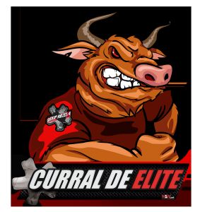 RANKING DE TOUROS -- 2019 -- CURRAL DE ELITE / EKIP ROZETA